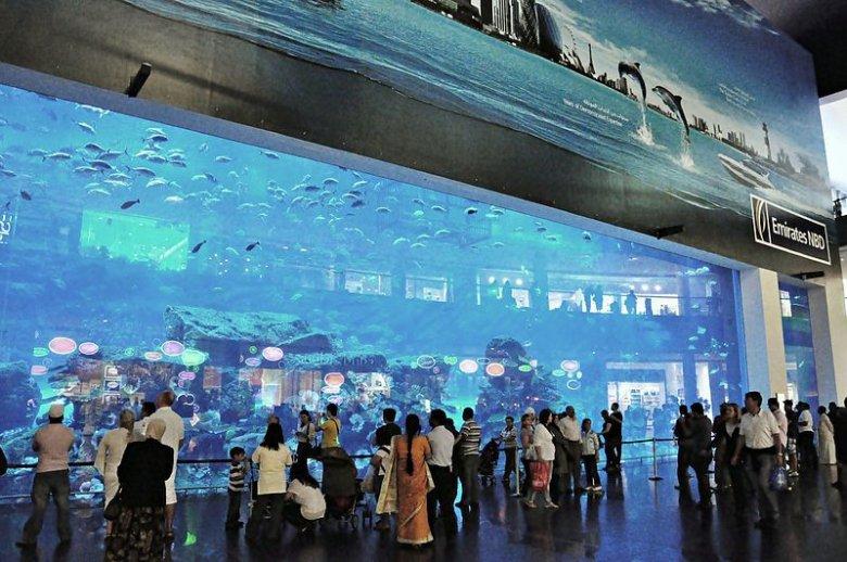 Dubai Mall to największe centrum handlowe na świecie z największym akwarium