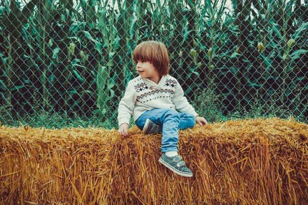 Fot. Pixabay / [url=https://pixabay.com/en/boy-child-young-people-kid-979673/]Olichel[/url]/[url=https://pixabay.com/en/service/terms/#usage]CC0 Public Domain[/url]
