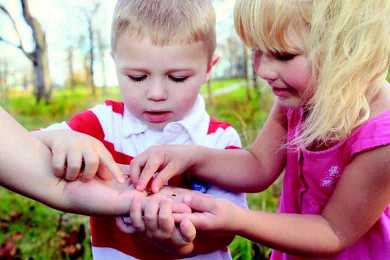 Fot. mcconnmama/ [url=https://pixabay.com/pl/dzieci-ch%C5%82opiec-dziewczyna-441895/]Pixabay[/url] / [url=https://pixabay.com/pl/service/terms/#usage]CC0 Public Domain[/url] Dzieci zadają pytania, bo ciekawi je świat dookoła
