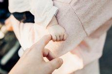 Jakie będą dzieci urodzone w 2020 roku? 25 stycznia rozpocznie się Rok Szczura