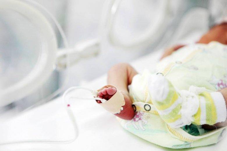 Przeszczep macicy – jak przebiegł udany eksperyment?