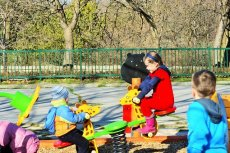 Żmije zygzakowate można spotkać także w przydomowych ogródkach i na placach zabaw