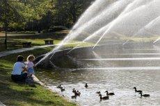 Czy dzieci powinny się kąpać w miejskich jeziorkach?