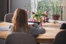 Co robić z dzieckiem w domu podczas kwarantanny? Tu nauczysz się rysować