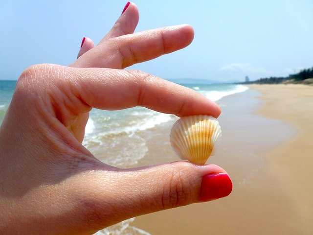 Fot. Pixabay /[url=http://pixabay.com/pl/pla%C5%BCa-muszla-paznokie%C4%87-lakier-r%C4%99ce-544621/brynczak[/url] / [url=http://bit.ly/CC0-PD]CC0 Public Domain[/url]