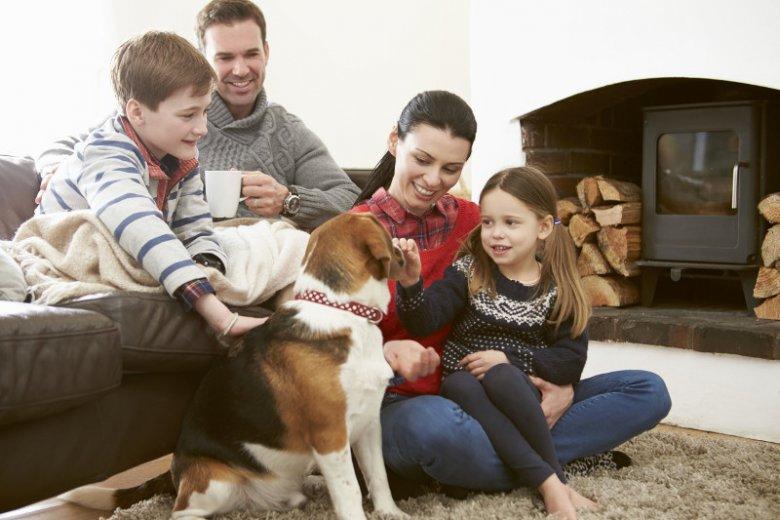 Gry towarzyskie to świetny, bo kreatywny sposób na domową zabawę w rodzinnym gronie