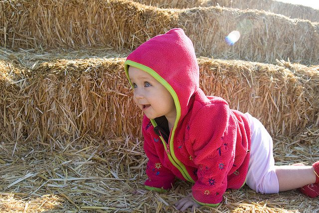 Fot. Flickr/[url=https://www.flickr.com/photos/nerdcoregirl/2959698486/]Caitlin Childs[/url] / [url=http://bit.ly/CC-BY-SA-2]CC BY-SA[/url]
