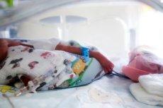 Rodzice sześcioraczków, które urodziły się w krakowskim szpitalu mogą liczyć na dużo wsparcia