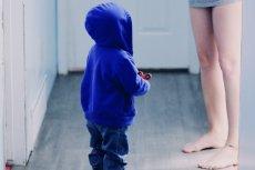 Psychoanalityk Juan Manzano opracował teorię definiującą 4 podstawowe elementy, które składają się na rodzicielski podświadomy lub nieświadomy narcyzm.