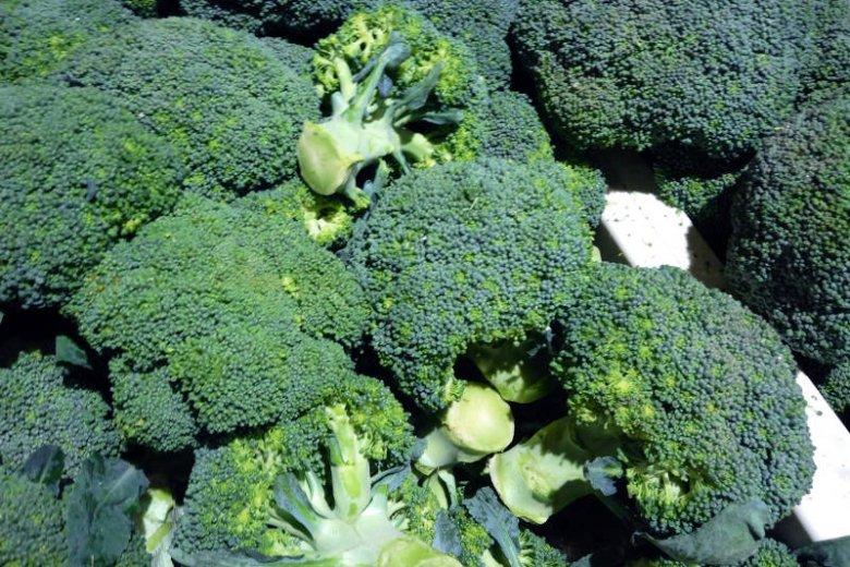 Brokuł to warzywo o działaniu antynowotworowym
