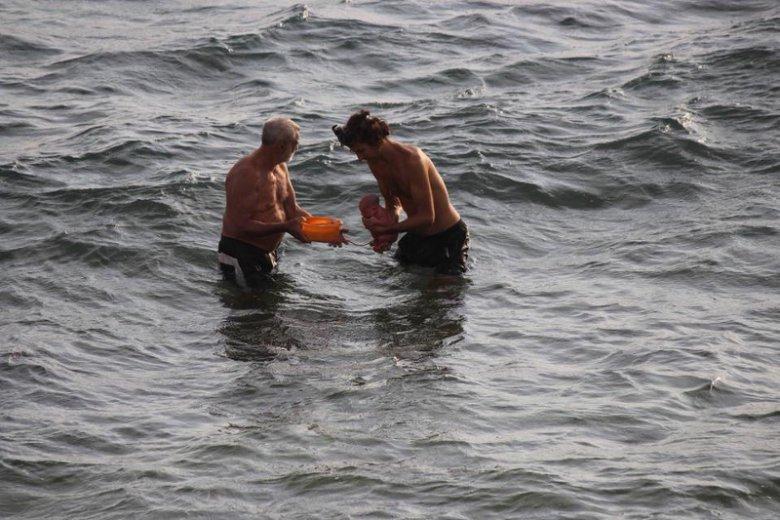 Niezwykły poród w Morzu Czerwonym.
