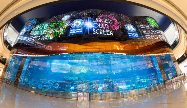 Dubai Mall - centrum handlowe z gigantycznym akwarium.