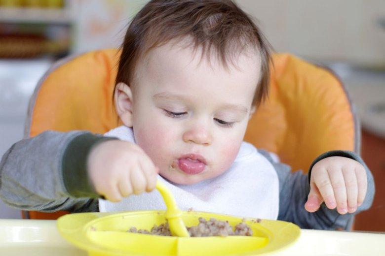 Jakie mięso wybrać dla dziecka?