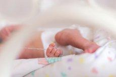Najmniejsze dziecko w Polsce uratowane.