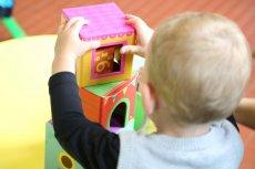 Ekonomiści policzyli, ile kosztuje wychowanie dziecka do 18 roku życia