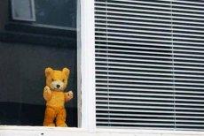 Polowanie na misia - #bearhunt