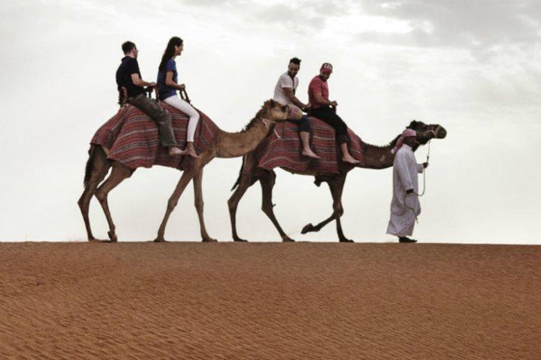 Przejażdżka na wielbłądzie to obowiązkowy punkt wizyty w Dubaju