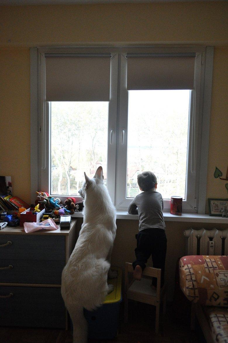 Sam&Riko czekają na tatę...