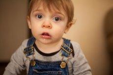 Rozwój malucha od pierwszych chwil narodzin do kilku lat jest bardzo intensywny.