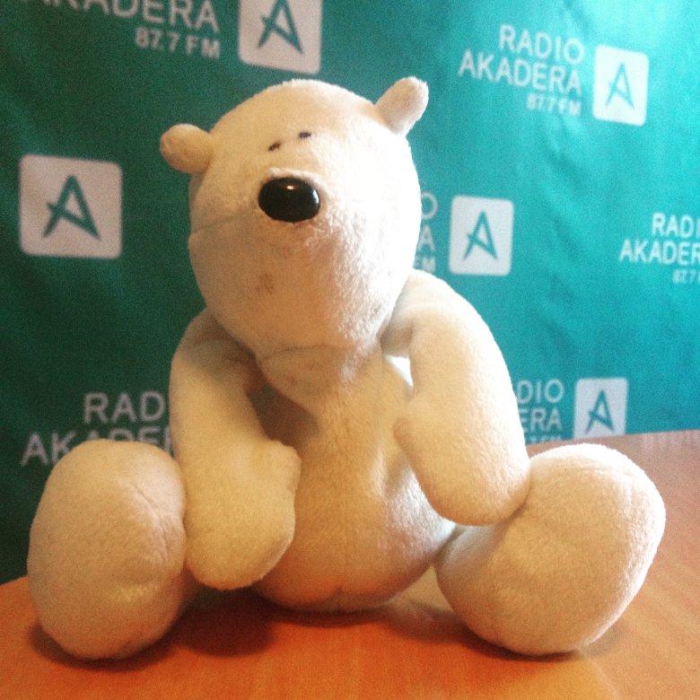 Miś w radiu Akadera, Światowy Dzień Pluszowego Misia