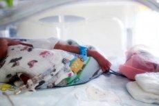 Sześcioraczki z głodu nie zginą. Wciąż jednak przebywają w krakowskim szpitalu