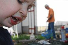 Flickr / [url=http://skroc.pl/71a4a]dadblunders[/url] / [url= http://goo.gl/OOAQfn]CC BY[/url] Powrót mamy do pracy nie jest łatwy dla reszty rodziny...