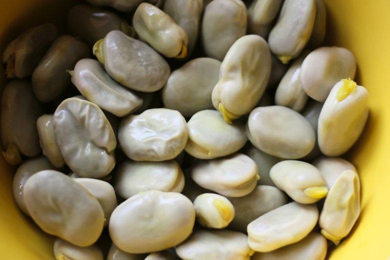 100 gramów ugotowanego bobu ma średnio 60 kcal.