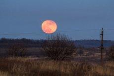 W nocy z wtorku na środę warto obserwować pełnię Różowego Księżyca