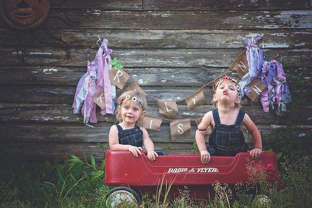Fot. Pixabay / [url=https://pixabay.com/en/twins-girls-wagon-family-two-cute-757404/]Greyerbaby[/url] / [url=https://pixabay.com/en/service/terms/#usage]CC0 Public Domain[/url]