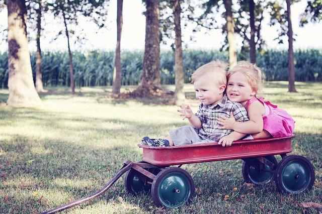 Fot. Pixabay/[url=https://pixabay.com/pl/m%C5%82odzie%C5%BC-dzieci-wagon-dziecko-640094/] mcconnmama[/url] / [url=  http://pixabay.com/pl/service/terms/#download_terms]CC O[/url]