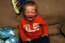 Co czuje 2-letnie dziecko?