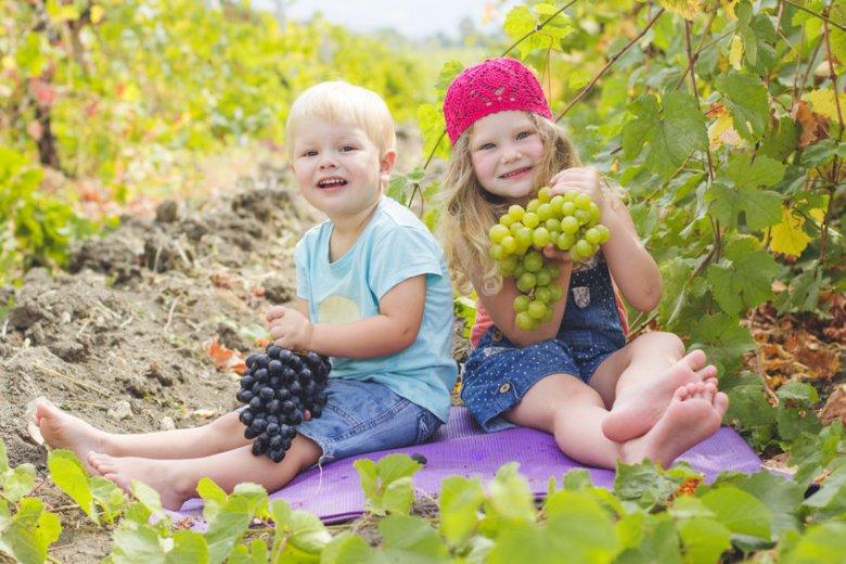 Nie dawaj dziecku winogron w całości.