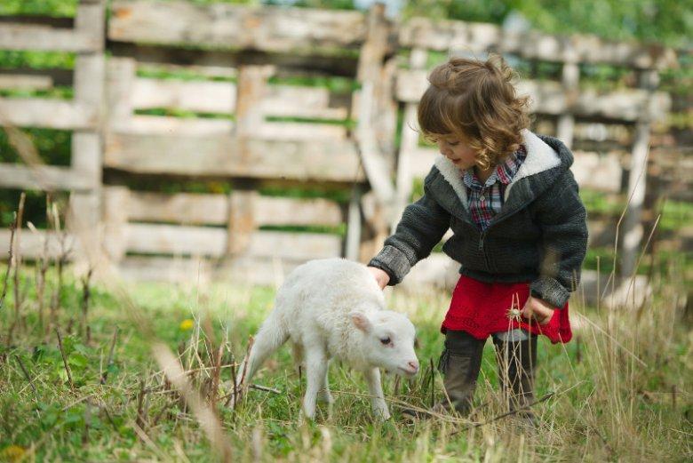 Dziecko musi mieć częsty kontakt z naturą, żeby kształtować prawidłowo swój układ odpornościowy