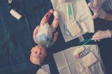 """Szpital dla zarażonych koronawirusem lalek i """"bezpieczny"""" odstęp między pluszakami. W dziecięcych zabawach odbija się ich patrzenie na świat w czasie pandemii."""