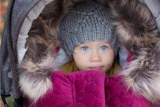 Zimowe spacery można polubić, pod warunkiem, że zaopatrzymy się w odpowiednie akcesoria
