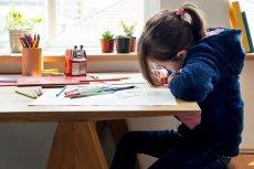 Wskazujemy 5 rzeczy, których możesz nauczyć dziecko w domu. To najlepszy czas na te lekcje