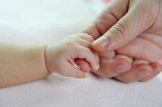 Jak rodzą się wcześniaki?