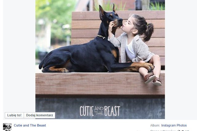 Fot. Screen z Facebooka [url=https://www.facebook.com/813859565293386/photos/a.841550912524251.1073741828.813859565293386/841552252524117/?type=1&permPage=1]Cutie and The Beast[/url]