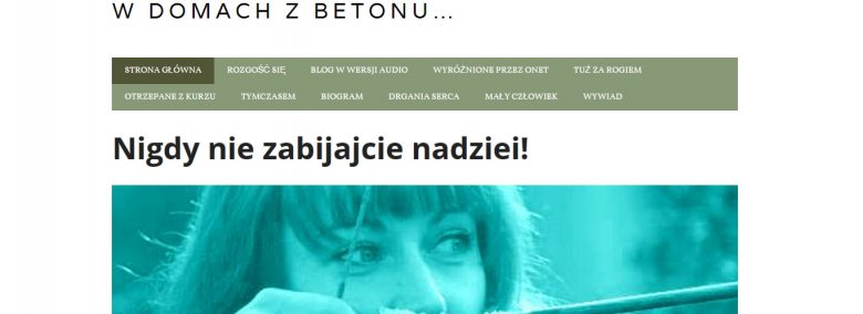 Fot. Screen ze strony [url=http://wdomachzbetonu.blog.pl/]W domach z betonu[/url]