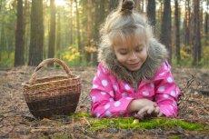 Jakie grzyby mogą jeść dzieci?
