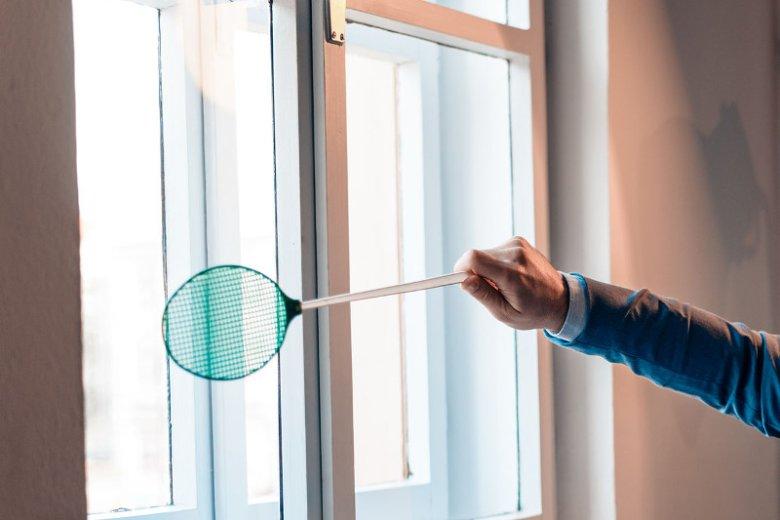 Sposób na muchy - jak pozbyć się much w domu?