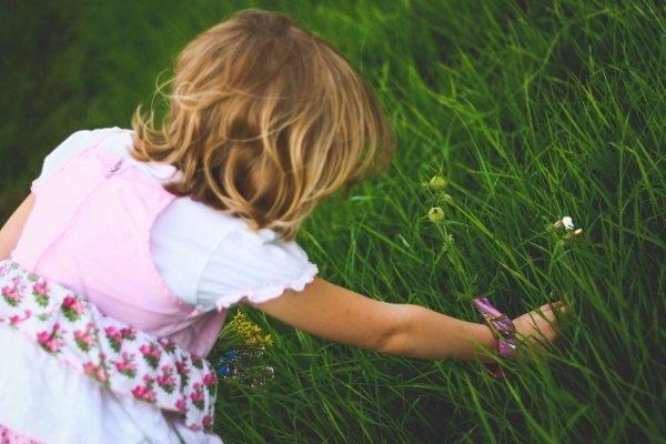 Fot. Pexels / [url=https://www.pexels.com/photo/little-girl-breaks-the-flowers-6123/]kaboompics.com[/url]/[url=https://www.pexels.com/photo-license/]CC0 License[/url]