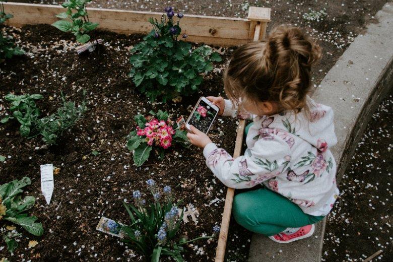 Sadzenie roślin to ekologia, żywienie i aktywność  fizyczna w jednym