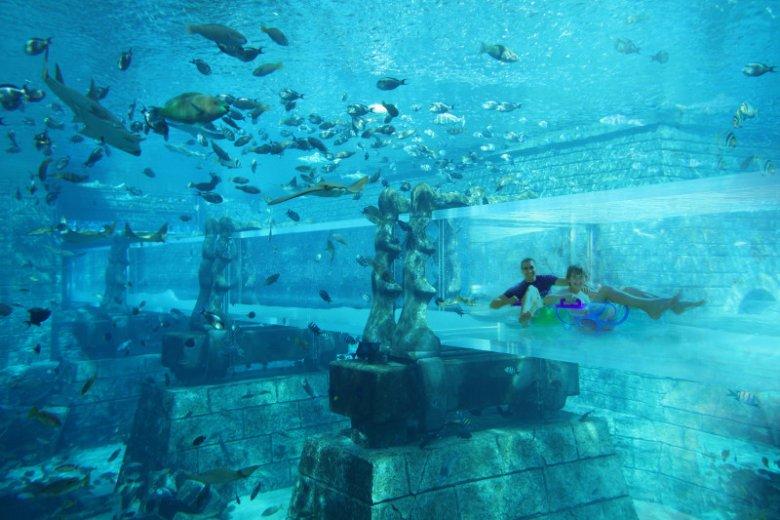 Dubajski Aquaventure Waterpark pozwala cieszyć się wodnymi zabawami w obecności morskiej fauny
