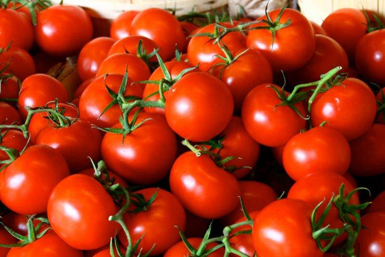 Pomidory są najpyszniejsze na świecie. Zwłaszcza o tej porze roku!