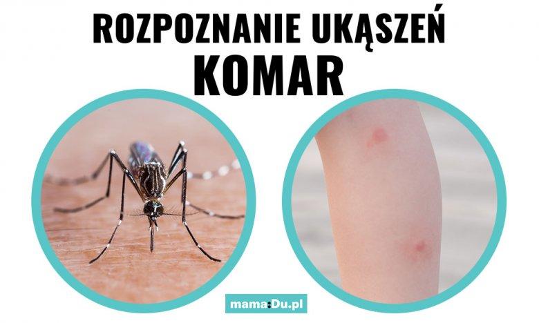 Jak wygląda ukąszenie przez komara?