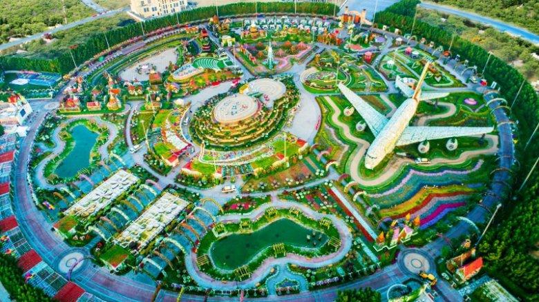 Dubai Miracle Garden, ogromny ogród kwiatowy w Dubaju