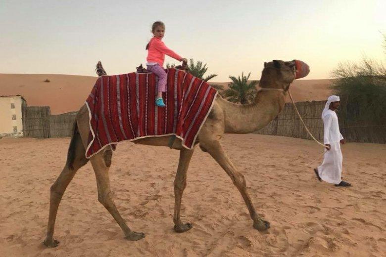 Jazda na wielblądzie w ramach Desert Safari Dubai