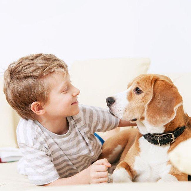 Dziecko i pies, dwóch przyjaciół