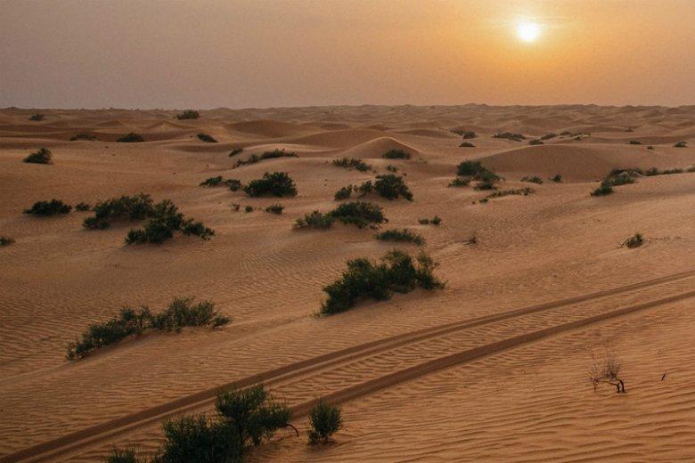 Co ciekawego można robić na pustyni? Przedstawiamy 5 zaskakujących propozycji spędzenia urlopu pośród piaskowych wydm Dubaju,  najpopularniejszego wakacyjnego miasta Bliskiego Wschodu
